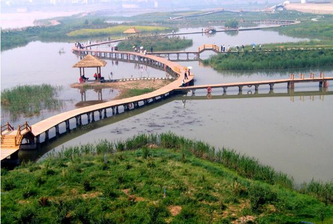 渭南尤河湿地公园(渭河下游渭南城区段水环境综合治理)工程